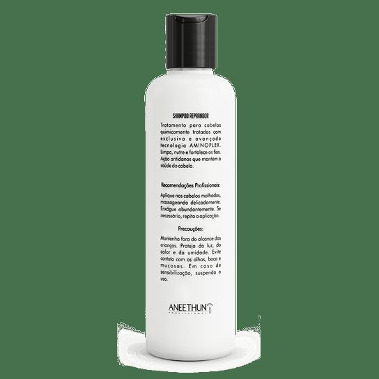 Aneethun-Aminoplex-shampoo-300ml-verso